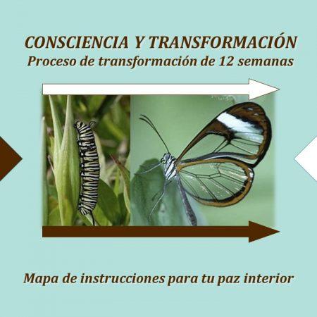 Consciencia y Transformación